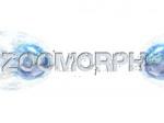 zoomorph wallp002