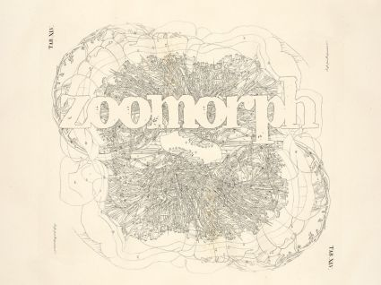 zoomorph anatomy002