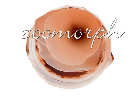 zoomorph wallp006